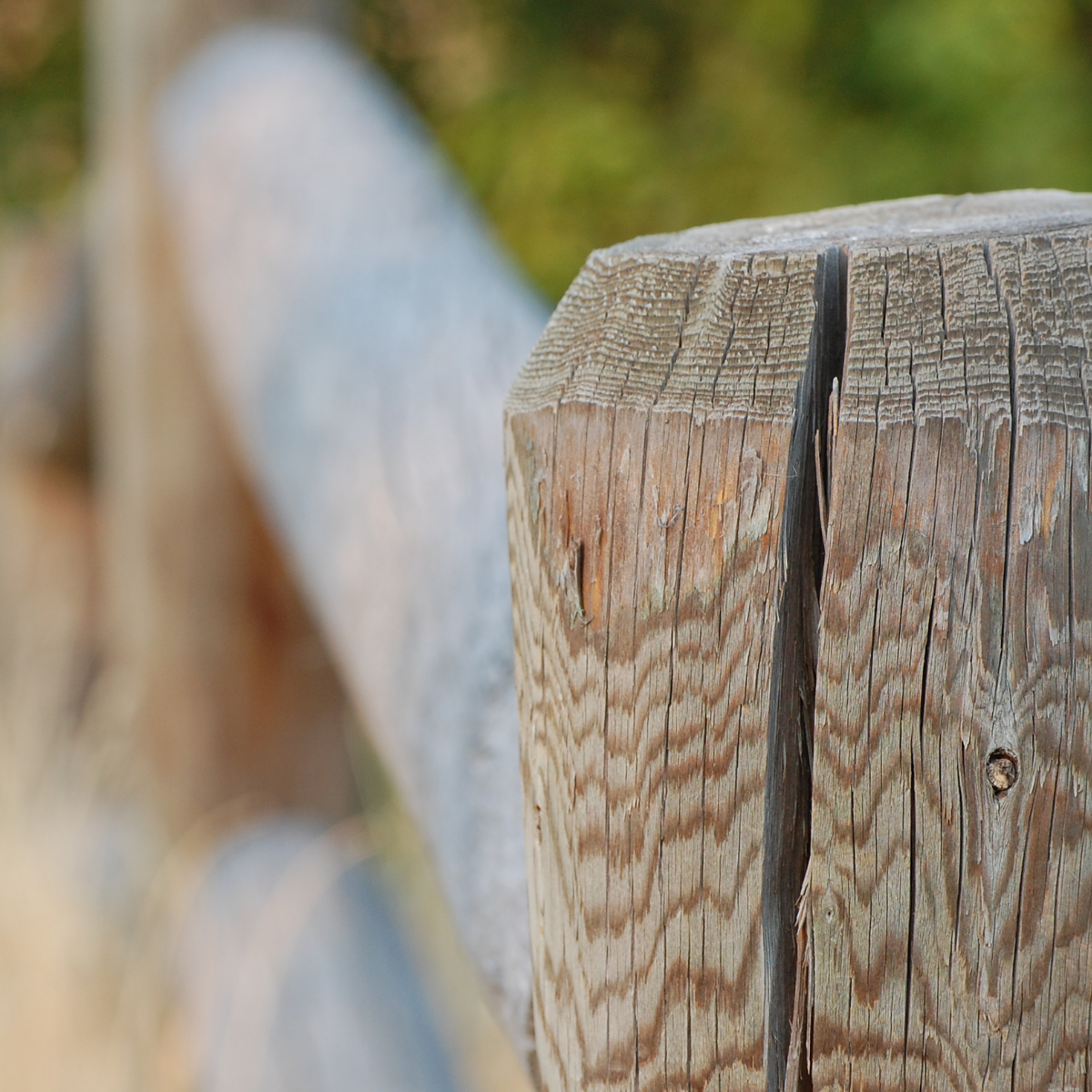 Round rail post and rail fence with check in the post