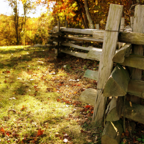 Old wood fence shot during the fall with the sun setting and leaves on the ground